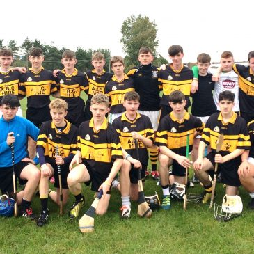 U16 Hurlers Unlucky in South Leinster Semi-Final