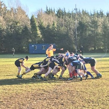 Rugby Teams Qualify for Leinster Finals